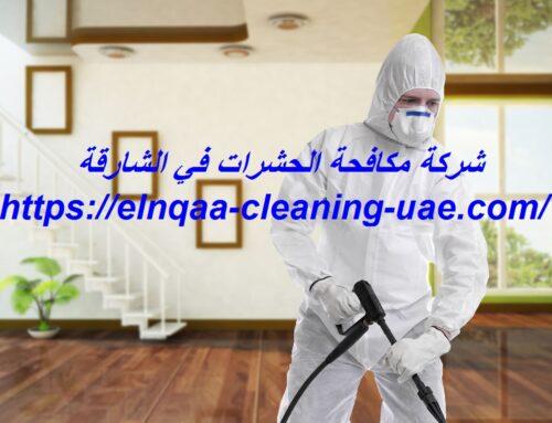 شركة مكافحة الحشرات في الشارقة |0545667540| ابادة حشرات